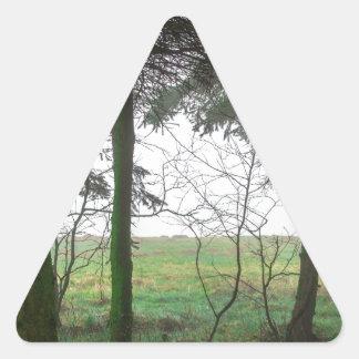 Esclarecimento de negligência da floresta na névoa adesivo triangular