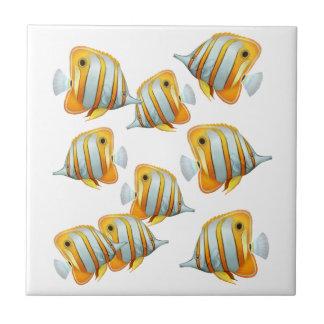 Escola do azulejo dos peixes da borboleta de Coppe