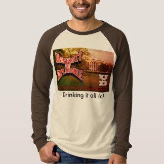 escolha da camisa do raglan das cores