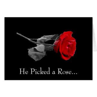 Escolheu um rosa… cartões