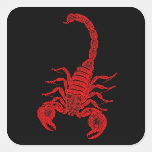 Escorpião do vermelho da ilustração do escorpião adesivo quadrado