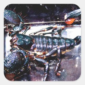 Escorpião grande, mau adesivo quadrado