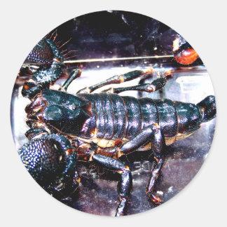 Escorpião grande, mau adesivos redondos