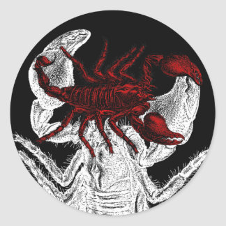 Escorpião vermelho - etiqueta adesivos em formato redondos