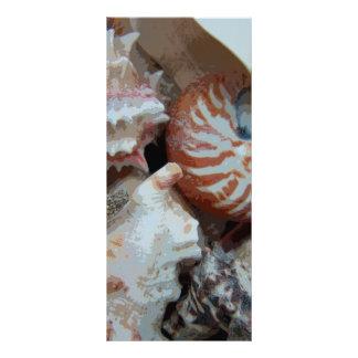 Escudos da praia de Florida 10.16 X 22.86cm Panfleto