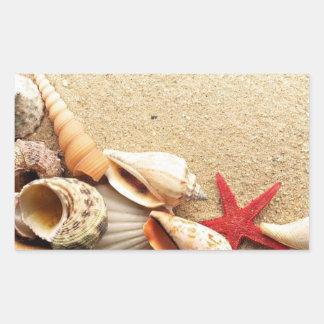 Escudos do mar & etiquetas da estrela do mar