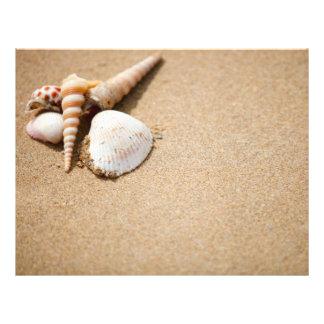 Escudos do mar na praia panfletos