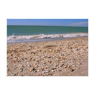 Escudos na praia - Sanibel Captiva Impressão Em Canvas