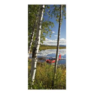 Escuteiro no lago Kanuti 10.16 X 22.86cm Panfleto