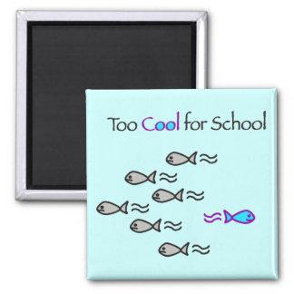 Esfrie demasiado para a escola - ímã dos peixes ímã quadrado