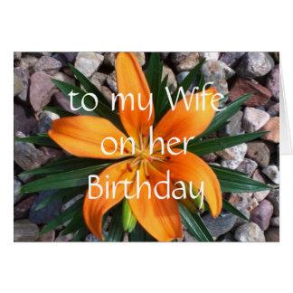 esposa do feliz aniversario cartão comemorativo