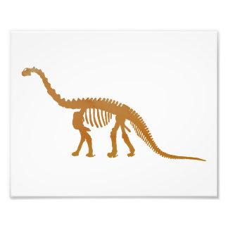 esqueleto do camarasaurus impressão de foto