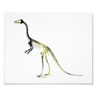 esqueleto do compsognathus impressão de foto