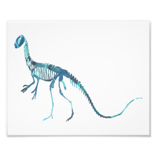 esqueleto do deinonychus impressão de foto