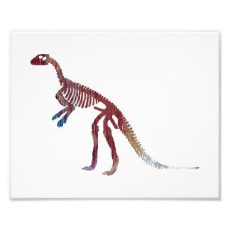esqueleto do hypsilophodon impressão de foto