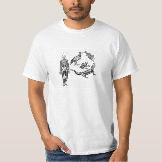 Esqueletos Camiseta