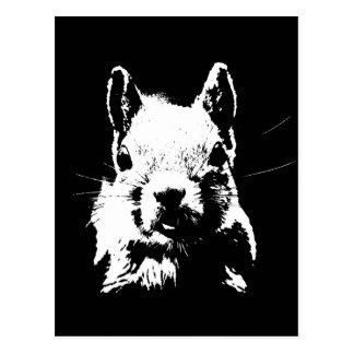 Esquilo Cartão Postal