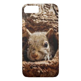 Esquilo cinzento em uma capa de telefone do furo