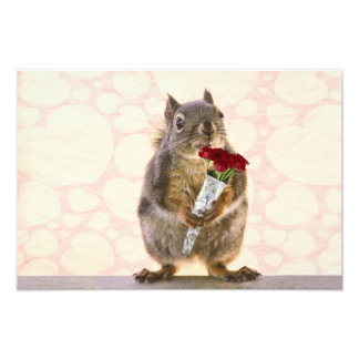 Esquilo com o buquê das rosas vermelhas impressão de foto