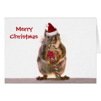 Esquilo do Natal com bastão de doces Cartão Comemorativo