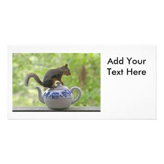 Esquilo em um bule cartoes com foto personalizados