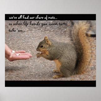 """Esquilo engraçado """"quando a vida lhe entregar gald pôsteres"""