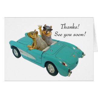 Esquilo no cartão de carro