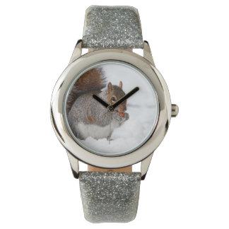 Esquilo no relógio de pulso da neve