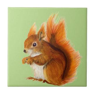 Esquilo vermelho pintado na arte dos animais