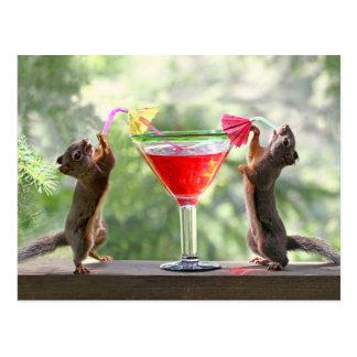 Esquilos do happy hour cartão postal