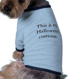 Este é meu traje do Dia das Bruxas Roupas Pet