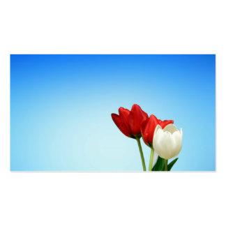 Estética branca vermelha do primavera das tulipas  cartoes de visitas