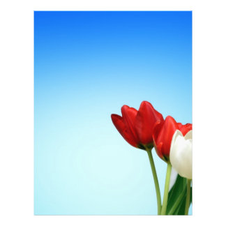 Estética branca vermelha do primavera das tulipas panfleto personalizado