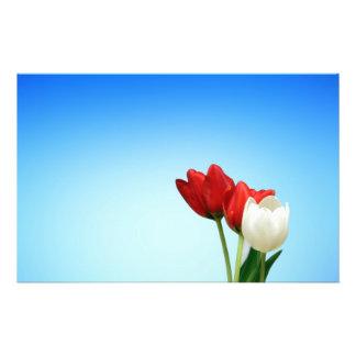Estética branca vermelha do primavera das tulipas  panfletos personalizados