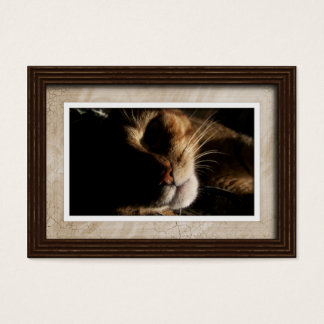 Estilo 01 da moldura para retrato dos cartões de