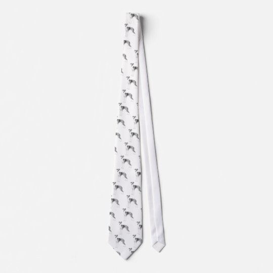 Estilo do galgo italiano gravata