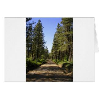 Estrada de terra alinhada árvore cartão comemorativo