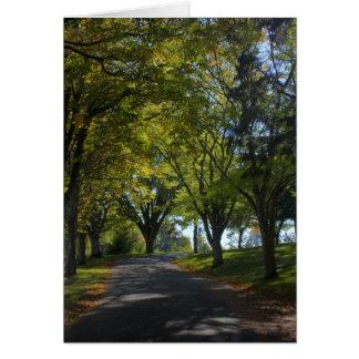 Estrada do outono (vazio) cartão comemorativo