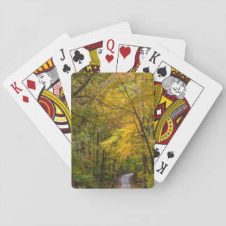 Estrada pequena do cascalho alinhada com cor do jogo de baralho