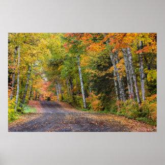 Estrada Strewn folha do cascalho com cor do outono Pôster