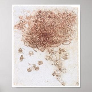 Estrela de Bethlehem e de outras plantas, da Vinci Poster