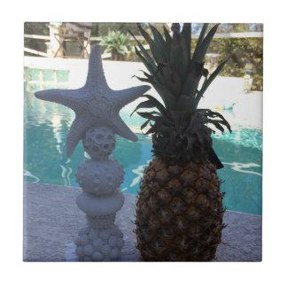 Estrela do mar do abacaxi
