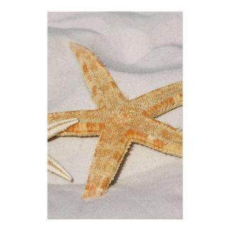 Estrela do mar modelos de panfleto