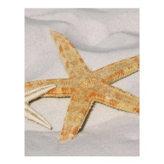 Estrela do mar panfleto personalizado