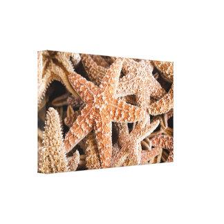 Estrela do mar na arte das canvas da praia