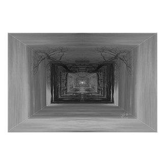 Estrela nas madeiras impressão de foto