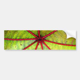 Estrutura tropical da folha do rodízio adesivos