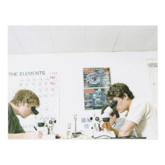 Estudantes com microscópios cartao postal