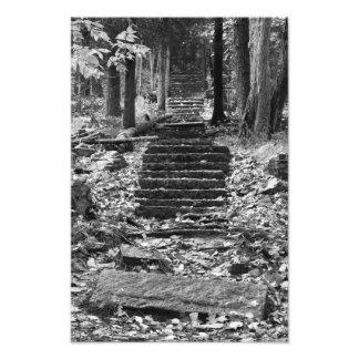 Etapas de pedra velhas impressão de foto