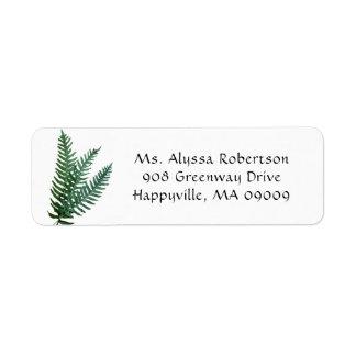 Etiqueta A samambaia verde sae natureza do endereço do